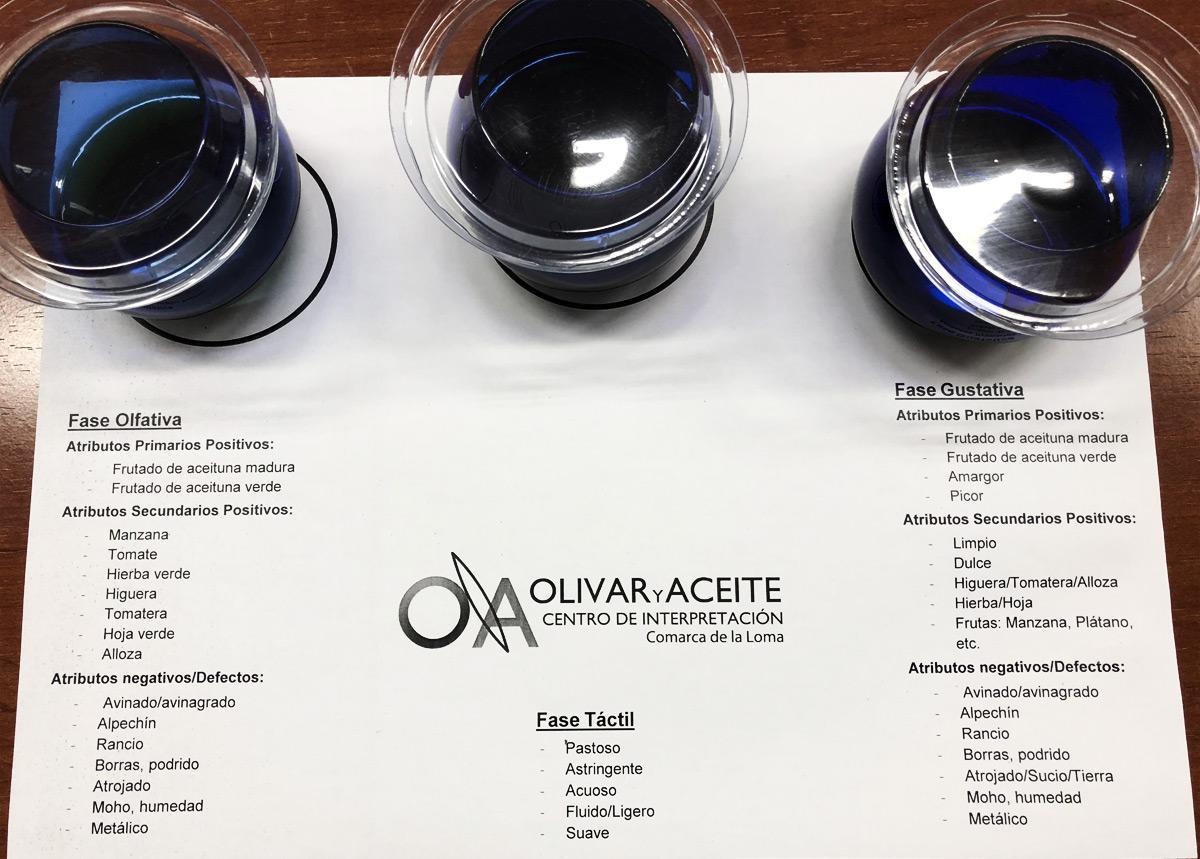 Déguster l'huile d'olive