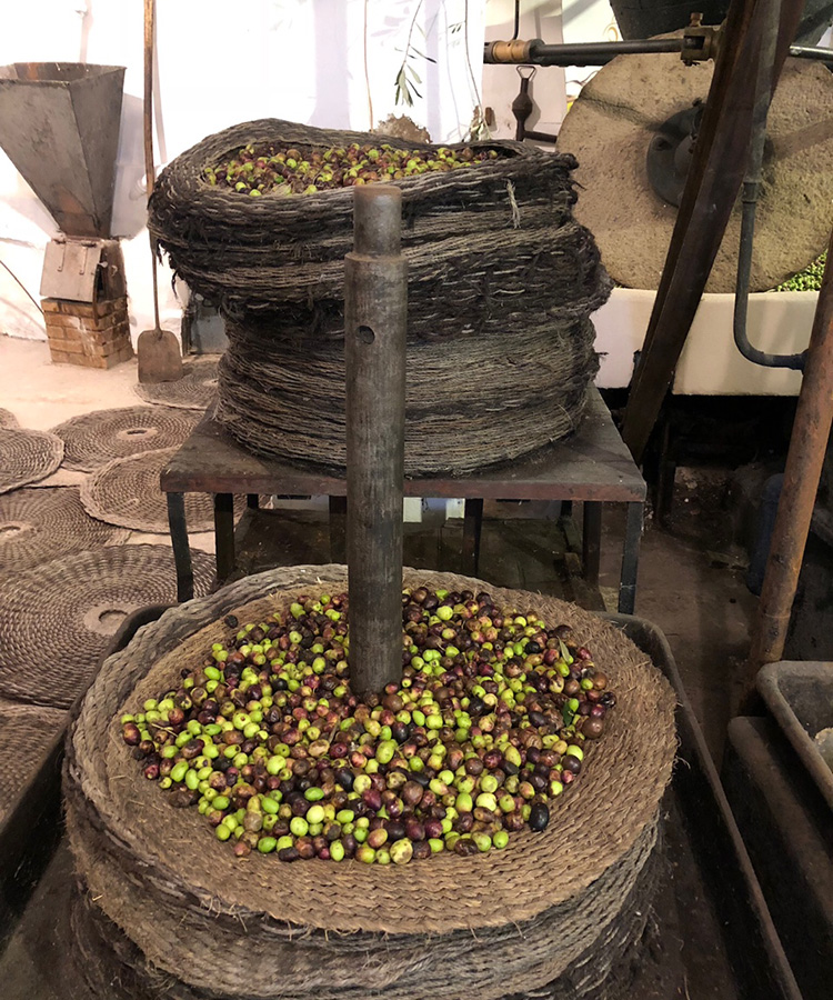old methods of extraction of olives