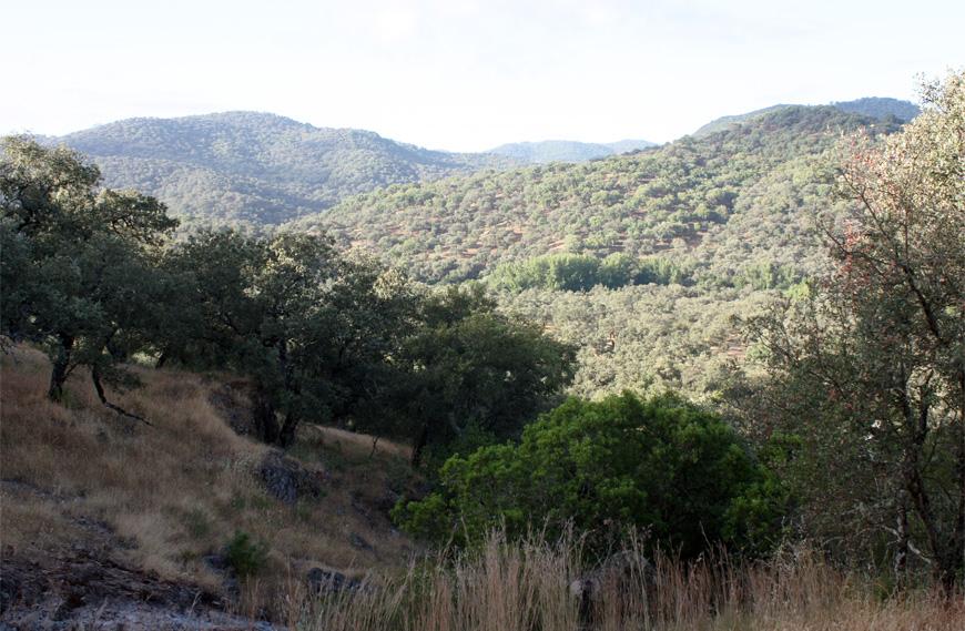 Sierra cerca de la finca Montefrio