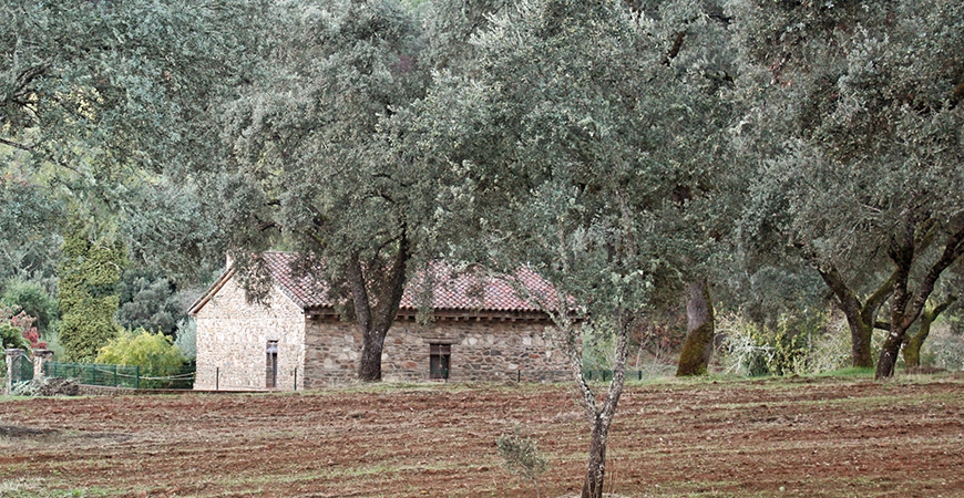Where to stay in the Sierra de Aracena?